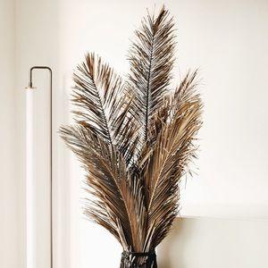 Palm Leaf BUNDLE
